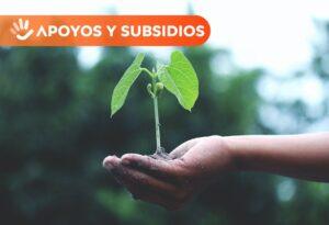 Curso desarrollo agropecuario